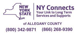 NewNYConnectsLogo