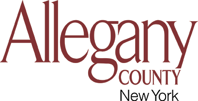 Board Of Elections Allegany County New York